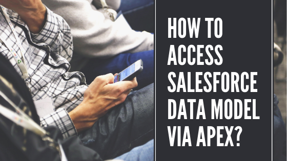 How to Access Salesforce Data Model Via Apex?
